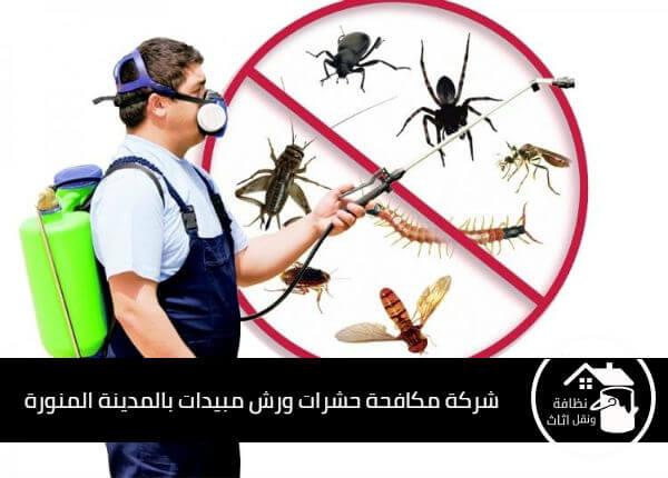 شركة مكافحة حشرات بالمدينة المنورة, شركة رش مبيدات بالمدينة المنورة, شركة مكافحة النمل الابيض بالمدينة المنورة